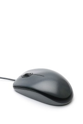 Εικόνα για την κατηγορία Ποντίκια